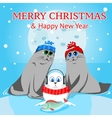 Family sea lions on a background of full moon at vector image vector image