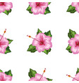 hibiscus blooming flower seamless with watercolor vector image