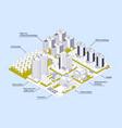 modern city infographics vector image