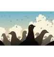 pigeon crowd vector image vector image