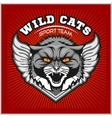 Wild cat head - design for logo and sport emblem vector image
