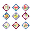 fresh healthy dinner of sea animals delicious vector image