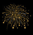 gold and silver firework vector image vector image