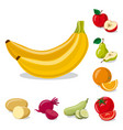 isolated object of vegetable and fruit icon set vector image