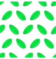Seamless pattern from green leaf of plant from