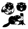 set of beaver signs vector image vector image