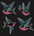 set swallow in old school tattoo style for vector image