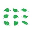 Green leaves set vector image