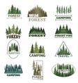 Forest badge set vector image