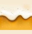 bubbled beer texture vector image