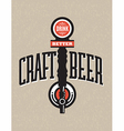 Craft Beer Design vector image vector image