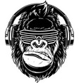 ferocious gorilla in headphones vector image