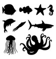 marine animals and fish vector image vector image
