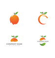 orange logo design vector image vector image