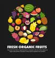 organic fruits and berries harvest poster of fresh vector image vector image