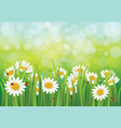 spring background with dais vector image vector image