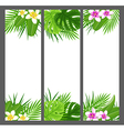 Vertical tropical banners with flowers vector image vector image