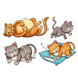 a set of cat character vector image