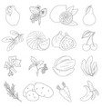 coloring book set of fruits and vegetables vector image
