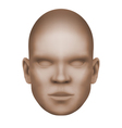 imaginary human face isolated three-dimensional vector image vector image