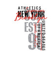 new york typography design t-shirt graphics vector image vector image
