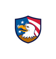 Bald Eagle Smiling USA Flag Crest Cartoon vector image