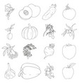 coloring book set of fruits and vegetables vector image vector image