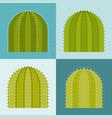 set cactus flat design vector image vector image