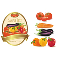 vegetables and labe vector image vector image