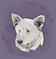 Head muzzle the dog Shepherd Sketch drawing Black vector image
