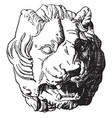 antique lion head shows the front view of the vector image vector image