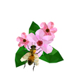 beautiful origami cherry blossom with bee vector image vector image