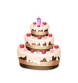 Cake with chocolate and cream burning candle vector image