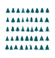 christmas tree silhouette design set concept vector image vector image