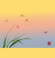 dragonflies and leaves grass on sunrise sky vector image