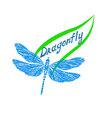 dragonflyLogo1 vector image vector image