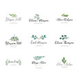 elegant logos wedding monograms hand drawn vector image vector image