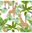 giraffe palm trees tropical pattern white vector image vector image