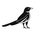 native magpie icon simple style vector image vector image