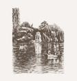 park pond view sketch vector image vector image