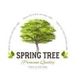 Tree typography logo vector image