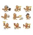 Set owl bird soccer Win in football championship vector image