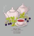 blackberry tea vector image