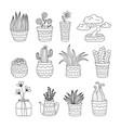 doodle flower pots vector image vector image