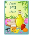 Spa Salon Poster vector image