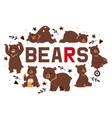 bears banner cartoon brown vector image