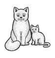 cat mom with kitten sketch vector image vector image