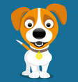 cheerful jack russell terrier vector image