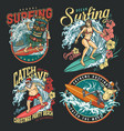 extreme surfing vintage colorful labels vector image vector image