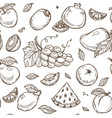 fruits sketch pattern background seamless vector image